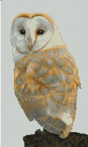 "Barn Owl 5 Counted Cross Stitch Kit 15/"" x 9/"" FREE P/&P B2454"