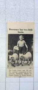 1953-Rosemary-Harris-Of-Combe-Martin-With-Jenny-And-Jill-Lambs