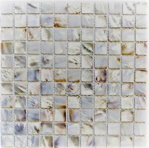 Détails sur Coquillage Nacre Mosaïque Mosaïque Blanc Beige Cuisine Mur  Salle de Bain WC 150-sm2525 | 10 de coffre- afficher le titre d\'origine