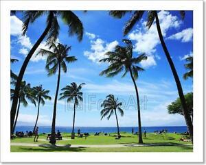Image Is Loading Beautiful Tropical Beach In Hawaii Art Print Home