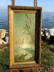 Antique oil painting on board trumpeter swans swimming for Pond reeds for sale