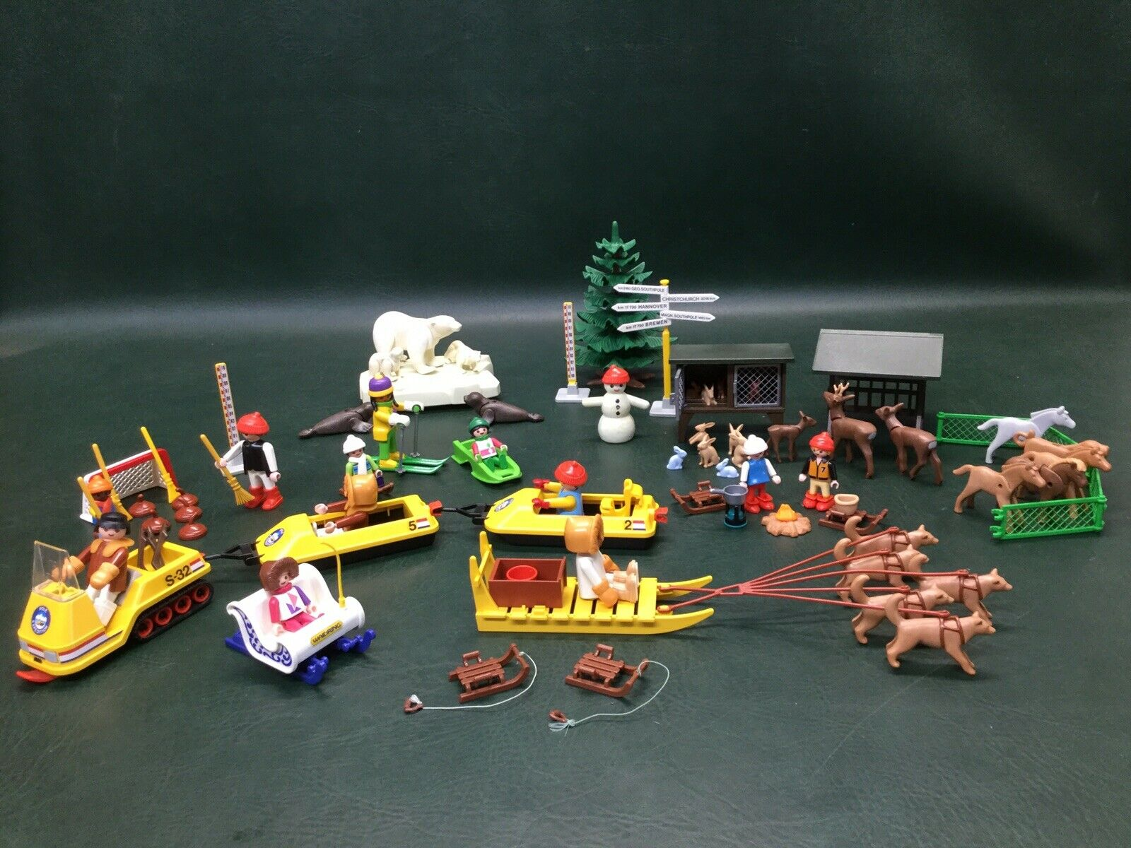 Lot de Playmobil Sports d'hiver & NORTH POLE EXPEDITION  12 figurines, animaux +