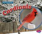 Cardinals by Lisa J Amstutz (Paperback / softback, 2015)