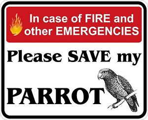 In-Case-of-Fire-Save-My-Parrot-Decals-Stickers