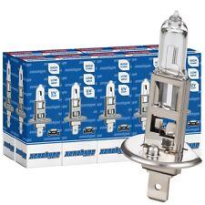 10x H1 XENOHYPE Premium Halogen LKW Lampe 24V 70 Watt P14,5s