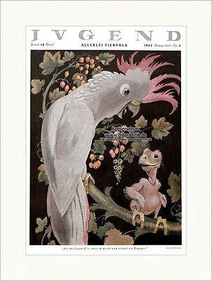 Titelseite der Nummer 7 von 1922 Carl Olof Petersen Papagei Ast Jugend 4337