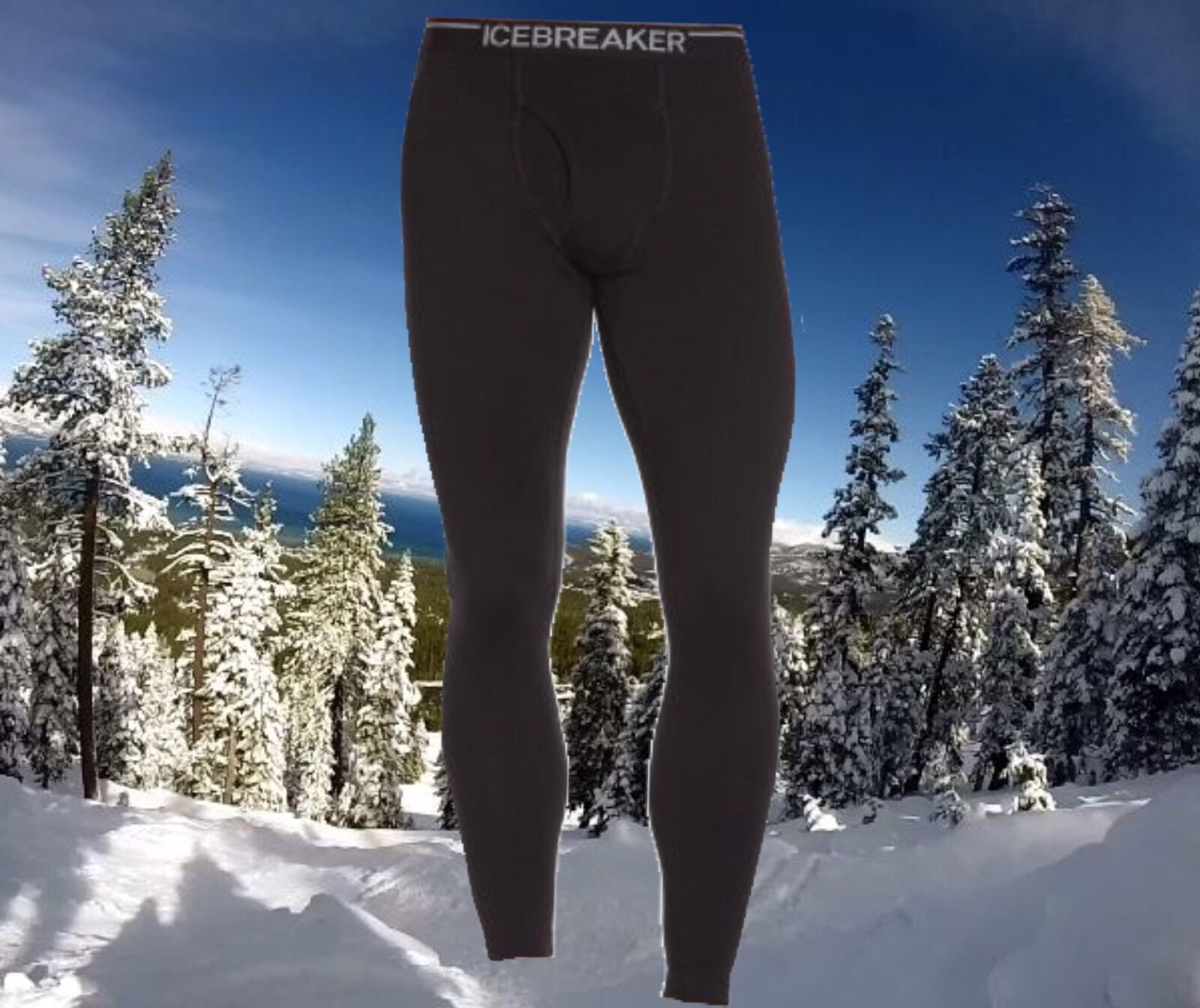 Icebreaker Mens Small Apex Merino Wool Sports Running Leggings Tights Nwt