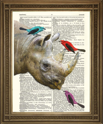 Friends Vintage Page Art RHINO /& BIRDS Dictionary Print FREE Shipping UK