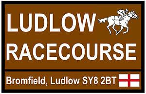 HORSE RACING TOURIST SIGNS (LUDLOW) - FUN SOUVENIR NOVELTY FRIDGE MAGNET - GIFT