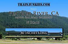 "Train Junkies N Feather River Mountain Backdrop L2R 12x80"" C-10 Mint-Brand New"