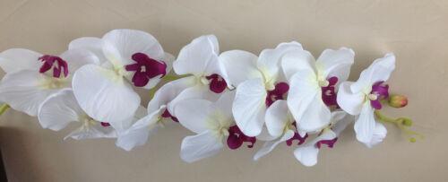 Orchideenzweig 122 cm XXL Seidenblumen Kunstblumen künstliche Orchidee wie echt