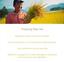 Im-del-arroz-Toner-150ml-empleo-Brightening-anti-envejecimiento-hidrato-coreano-arroz miniatura 5