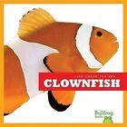 Clown Fish by Cari Meister (Hardback, 2012)