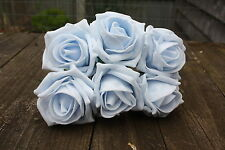 6 X BABY BLUE INDELEBILE Schiuma Cottage Rose Aperto 6cm