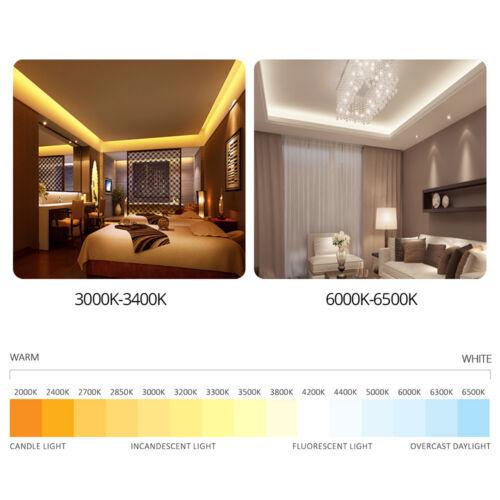5630 LED Strip Light White Warm White 3000K 6500K LED Strip 12V Not Waterproof