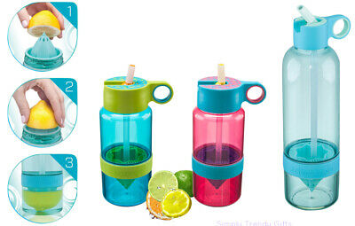 Citrus Zinger Sport Pink Blue Kid Zinger Water Bottle 470ml //790ml Zing Anything