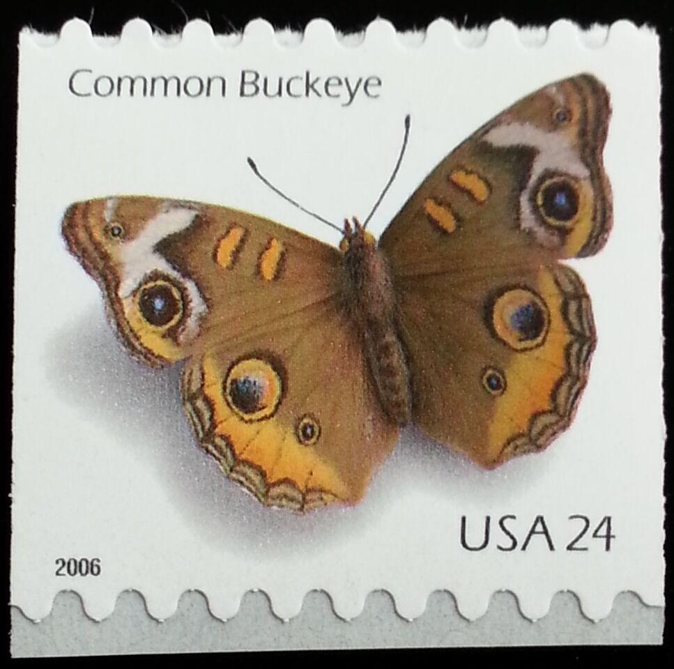 2006 24c Common Buckeye Butterfly, Coil Scott 4002 Mint