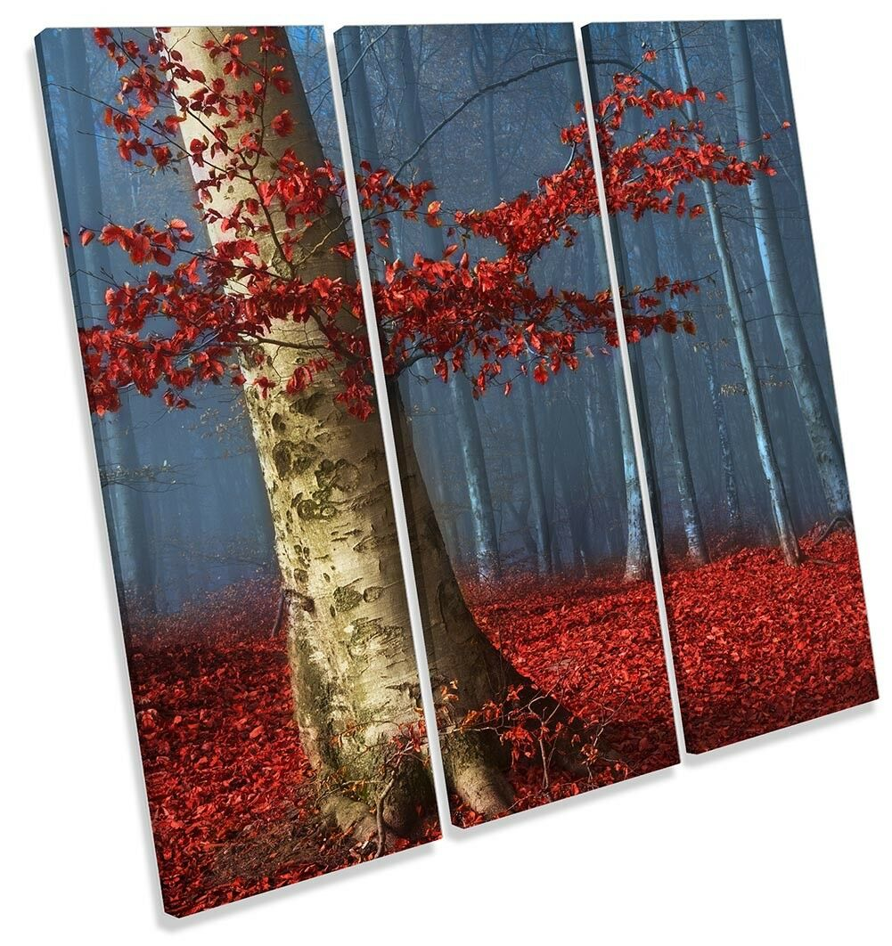 Forest rot rot rot Twilight Landscape Picture TREBLE CANVAS WALL ART Print 1479ab