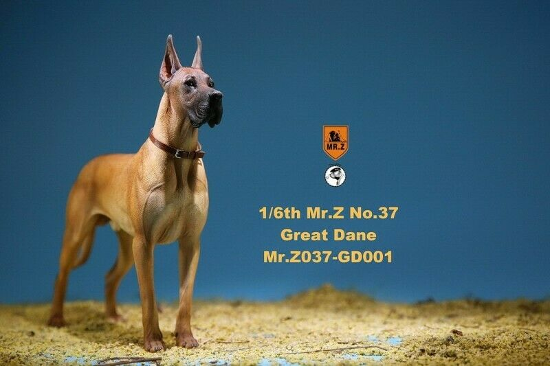 Z 037 GD001  1//6 The German Great Dane Figure Animal Dog Model Resin Pet Toy Mr