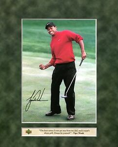 TIGER WOODS ~ 8x10 Upper Deck Color Photo Picture