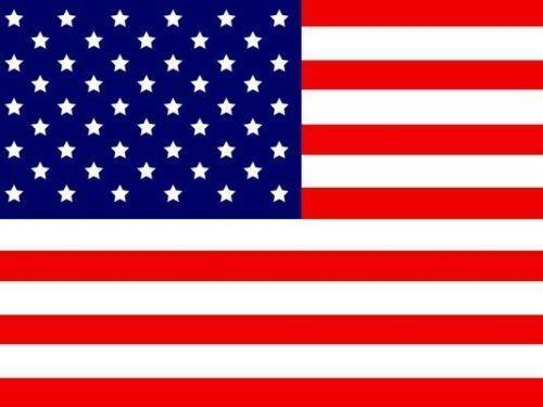 American Replacement Flag ATV Bicycle Rhino UTV NEW 5 pk