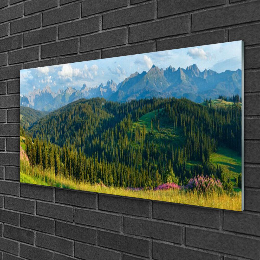 Image sur verre Tableau Impression 100x50 Nature Forêt Montagne