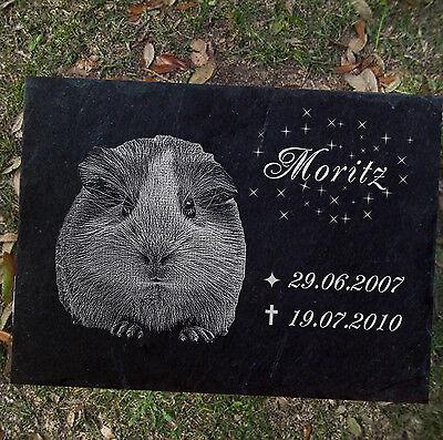 TIERGRABSTEIN Gedenkstein Meerschweinchen Meerschwein-001 ►Fotogravur◄60 x 30 cm