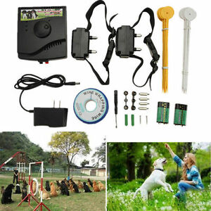 Underground-Waterproof-2-Shock-Collar-Electric-Dog-Fence-Fencing-System-Kit-USA