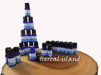 Clove Bud Essential Oil - Premium Therapeutic Grade - Made In Usa - 5 Or 10ml