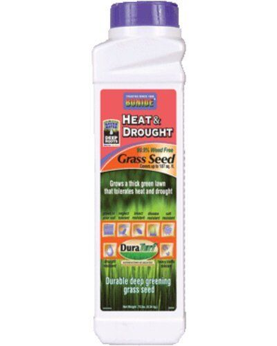 Heat /& Drought Grass Seed Shaker Cannister