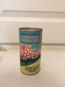 The Jonsteen Company Flowering Cherry Parks Collection Tree Seed Grow Kit