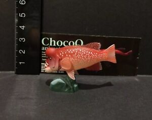 Kaiyodo-Animatales-Choco-Q-Series-8-Bulgy-head-Humphead-Wrasse-Fish-Figure
