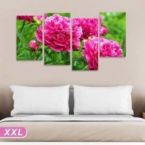 Peonie Quadro su tela 152x78 stampa fiori rosa camera letto hotel ...