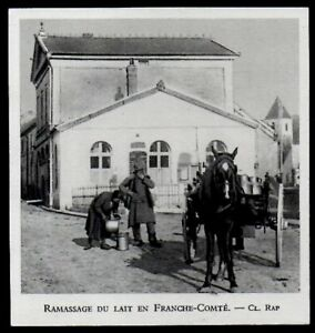 1948 -- RAMASSAGE DU LAIT EN FRANCHE COMTE 3N125 - France - 1948 -- RAMASSAGE DU LAIT EN FRANCHE COMTE 3N125 il ne s'agit pas d'une Carte Postale mais d'un document GARANTI D'EPOQUE présenté sur carton d'encadrement Année de parution : 1948 format : 85 X 90 mm Paiements acceptés : Paypal - chque banca - France
