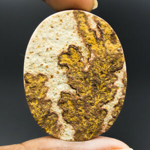 Cts-55-35-Natural-Psilomelane-Dendritic-Limestone-Oval-Cabochon-Loose-Gemstone