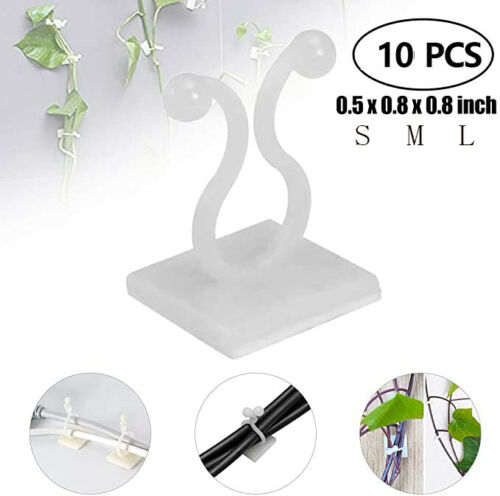 10Pcs Invisible Wall Vines Climbing Sticky Hook Vines Fixing Clip Holder S M L
