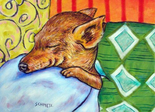CHIHUAHUA sleeping dog 11x14  art PRINT dog prints animals gift new