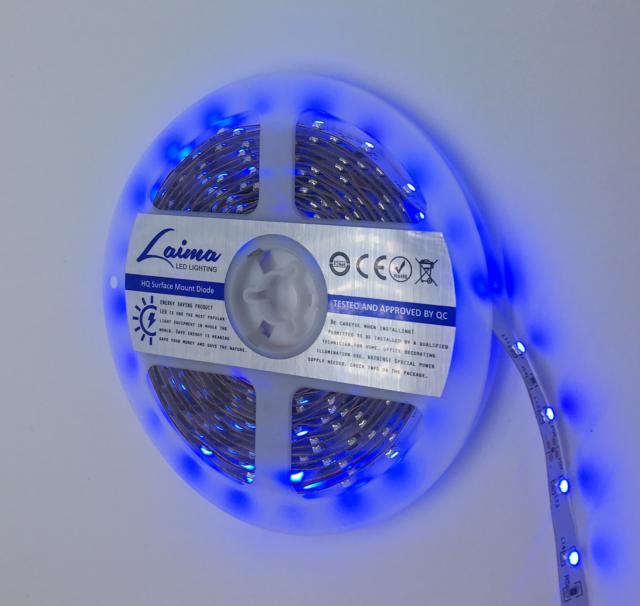LED Strip Light 3528  5 Meters  Blue IP33  (025) 60 LED/1m