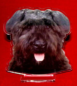 statuette-photosculptee-10x15-cm-chien-bouvier-des-flandres-2-dog-hund-perro