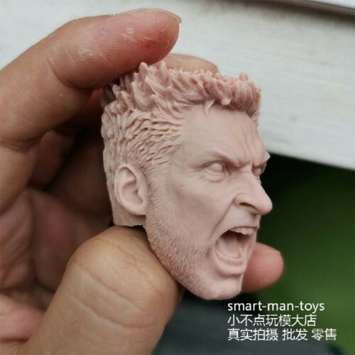 """DIY 1//6 Unpainted Head Sculpt Carved Model F 12/"""" Action Figure Collectible Toys"""