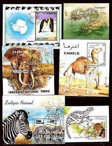 TODOS-LOS-PA-SES-6-CUADERNOS-animales-salvajes-C254