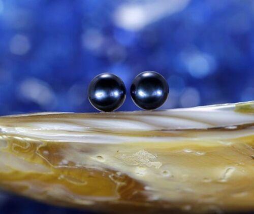 10K Solid or Blanc 7-7.5 mm noir élégant Freshwater Pearl Clous d/'oreilles