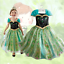 Girls Princess Anna Green Dress Fancy Costume Baby Party Kids Cosplay Christmas