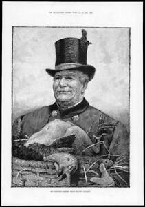 1884-FINE-ART-Antique-Print-Christmas-Hamper-Percy-Tarrant-Turkey-Hat-239
