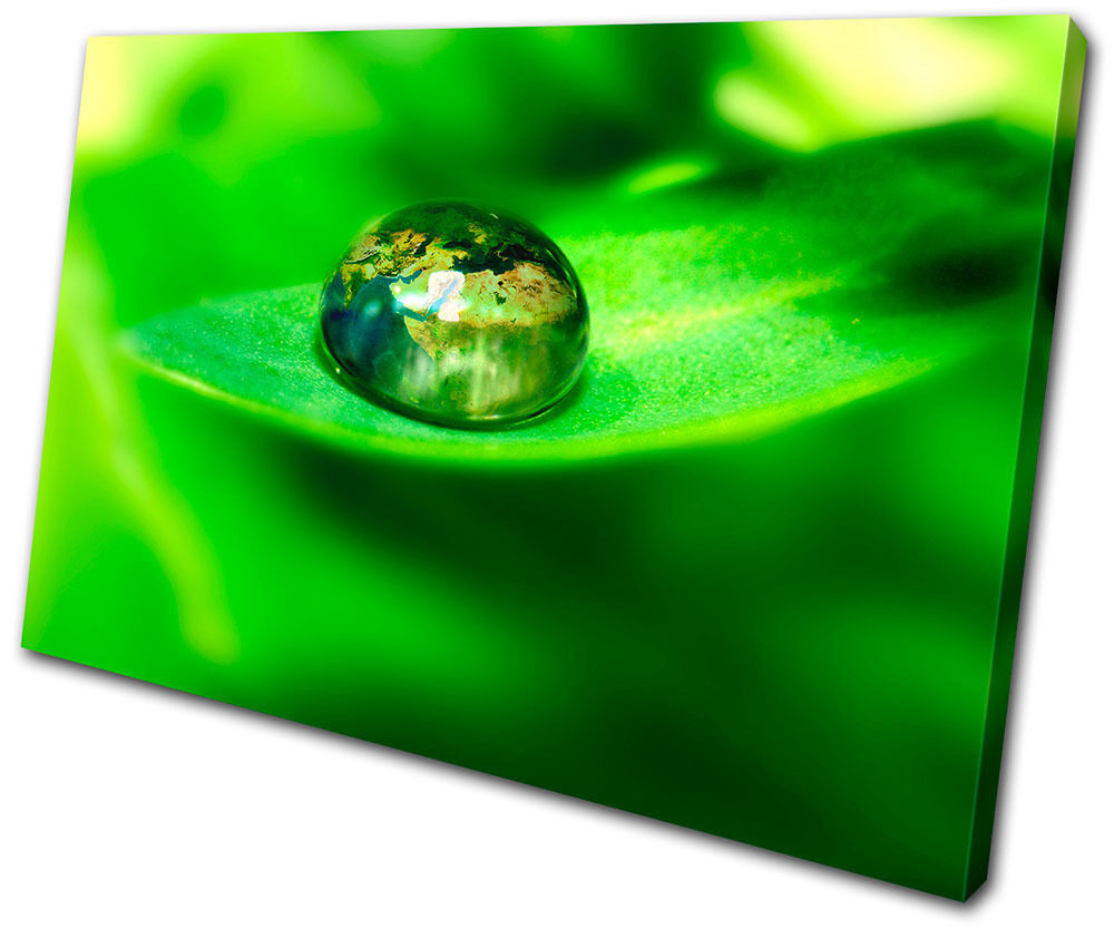 Canvas Art Picture Print Decorative Photo Leaf Water Drops nature Floral