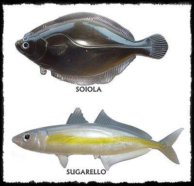 Esca Artificiale Gomma Spinning Traina Bolentino Mare Lago Bass Luccio Ricciola Materiale Selezionato
