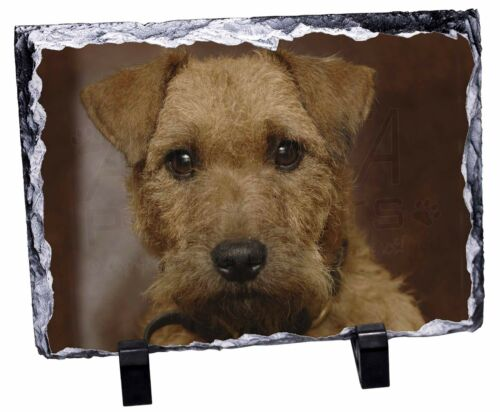 Lakeland Terrier Dog Photo Slate Christmas Gift Ornament, ADLT2SL