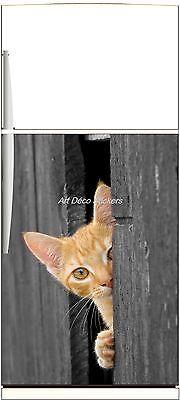 Sticker frigo électroménager déco cuisine Chat 60x90cm Réf 308