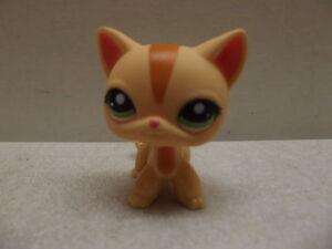 Littlest Pet Shop Orange Short Hair Cat 1905 Green Eyes Ebay