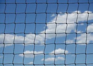 Copieux Pond Leaf Protetion Jardin Anti Oiseau Filet Heavy Duty Net Forte Maille 28 Mm-afficher Le Titre D'origine Les Couleurs Sont Frappantes